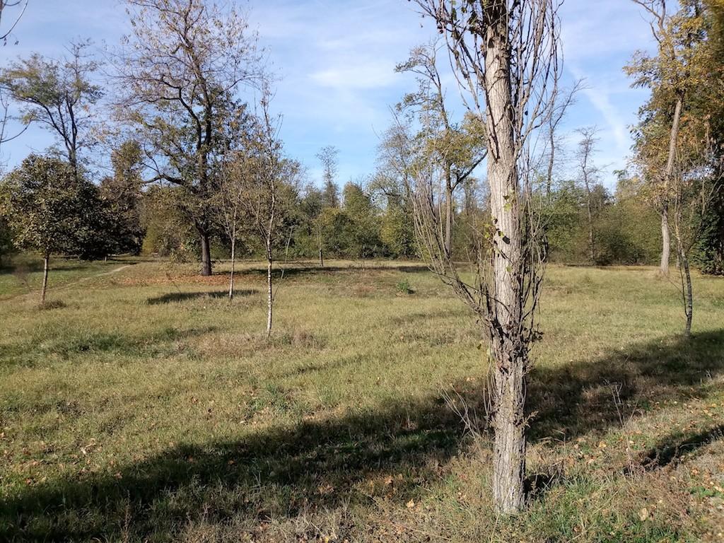 parco del boschetto