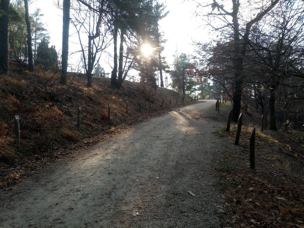 Camminate a Torino Parco della Maddalena