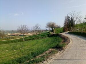 Strada Valentino